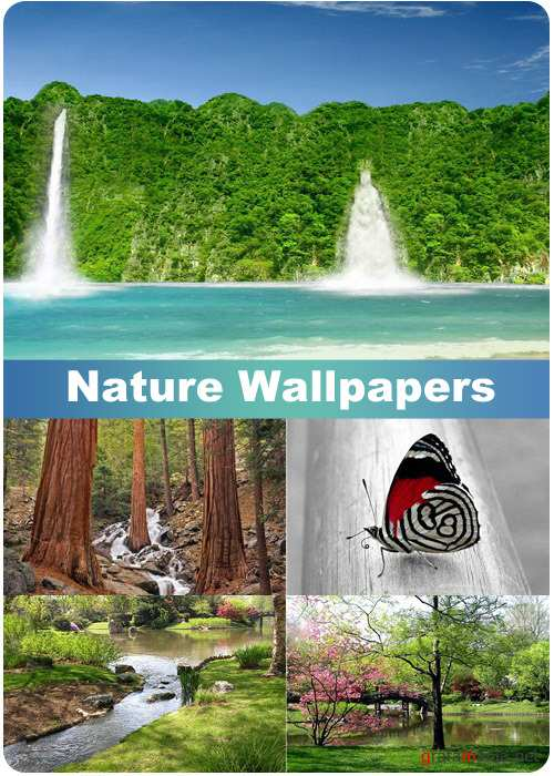 Nature Wallpapers (part 81)