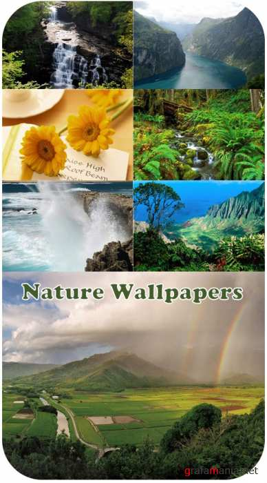 Nature Wallpapers (part 44)