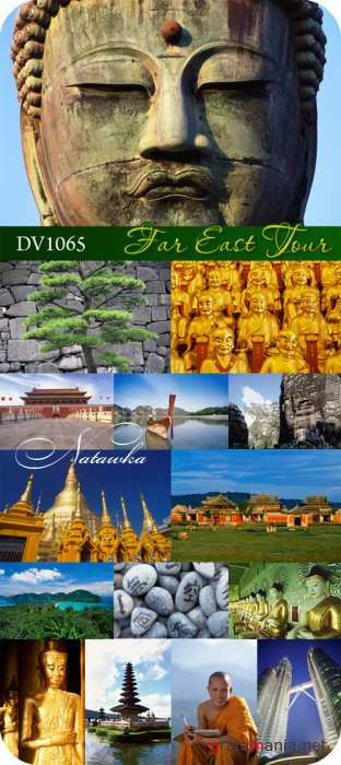 DV1065 Far East Tour