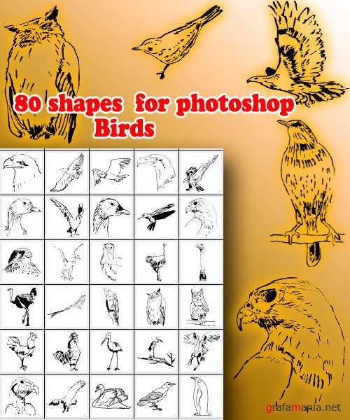 80 shapes  for photoshop Birds
