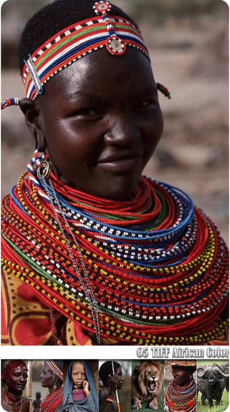 African Color, ����������� ��������