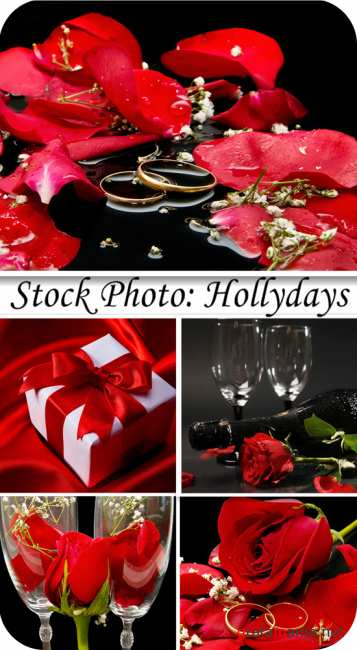 Stock Photo:  Hollydays
