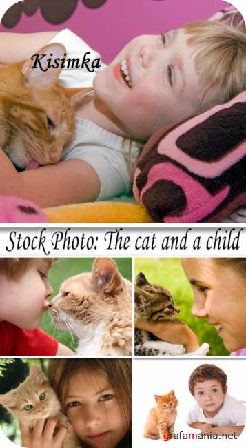 Stock Photo:  The cat and a child