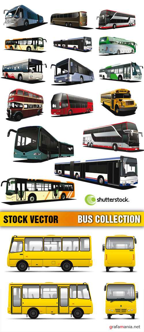 Stock Vector - Bus Collection