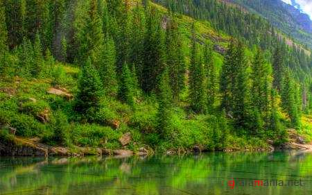 Nature WideScreen Wallpapers 65