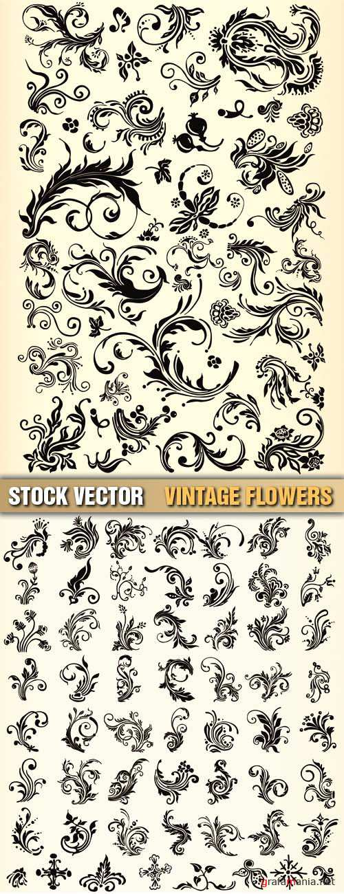 Stock Vector - Vintage Flowers