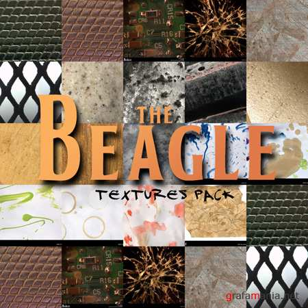 The Beagle textures pack