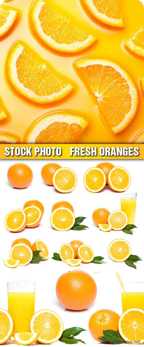 Stock Photo - Fresh Oranges