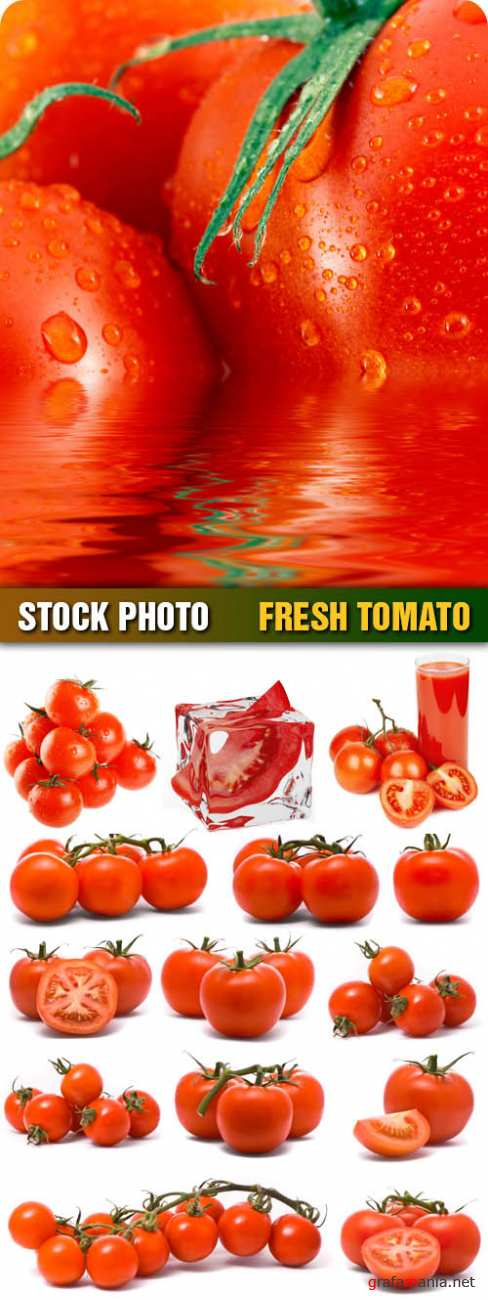 Stock Photo - Fresh Tomato