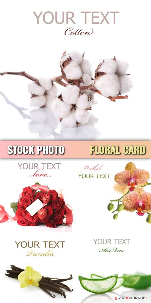 Stock Photo - Floral Card