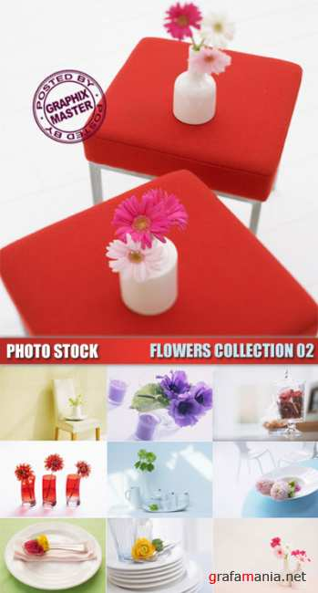 Photo Stock - Flowers Collection 02