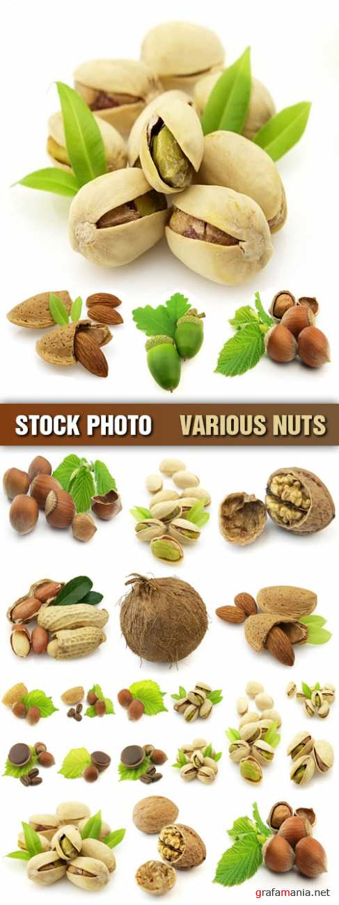 Stock Photo - Various Nuts