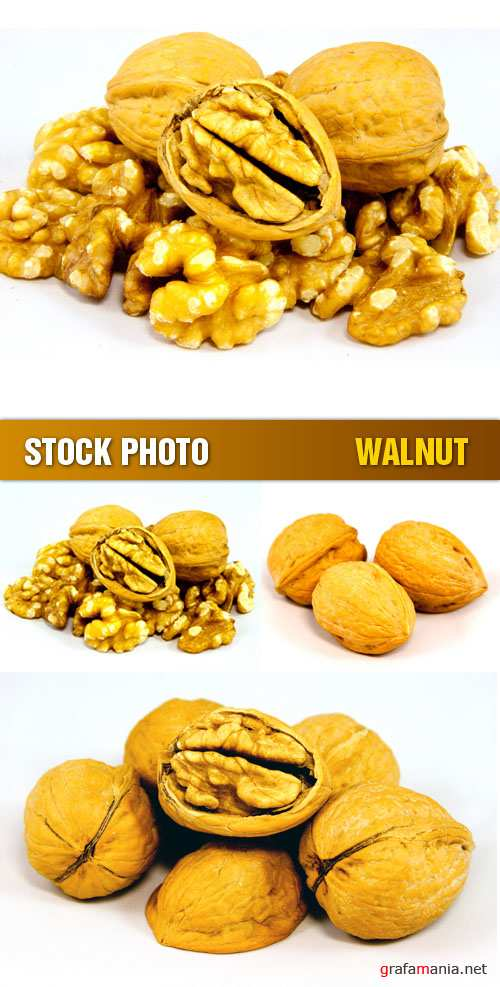 Stock Photo - Walnut