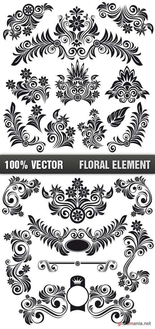 Stock Vector - Floral Element