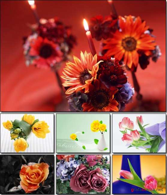 Flowers Wallpapers (5) - ���� �� ������� ����