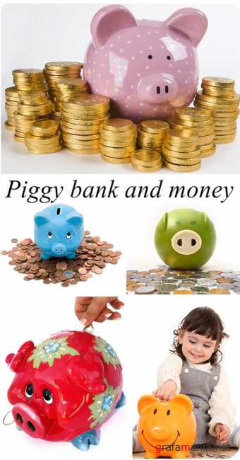 Stock Photo: Piggy bank and money