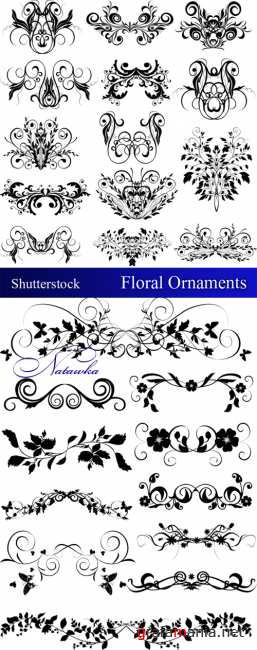 Floral ornaments - Shutterstock