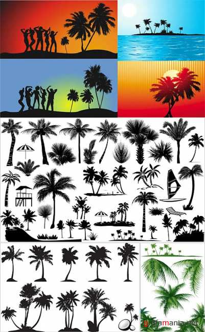 Tropical silhouettes