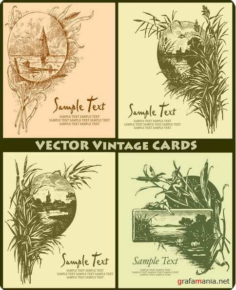Vector Cards 4