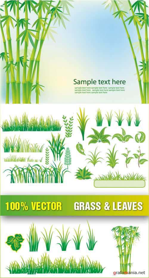 Stock Vector - Grass & Leaves