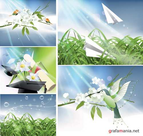 Vector nature of light and plant material