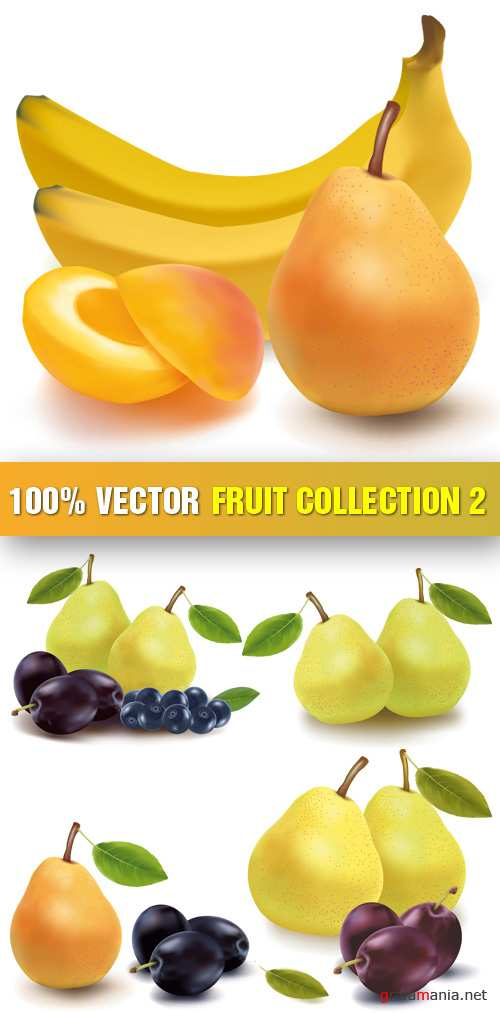 Stock Vector - Fruit Collection 2
