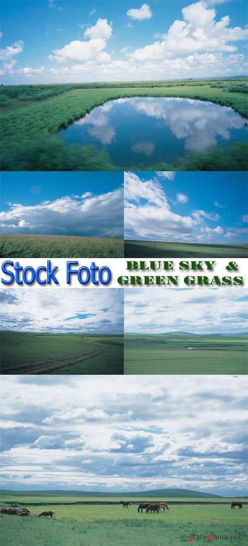 Stock Foto: Blue sky and green grass