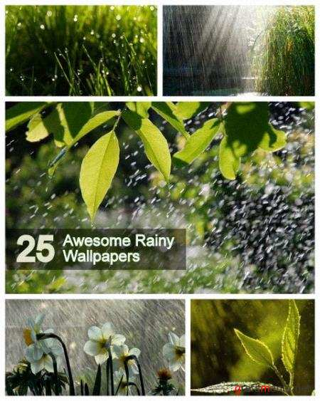 25 Awesome Rainy Wallpapers