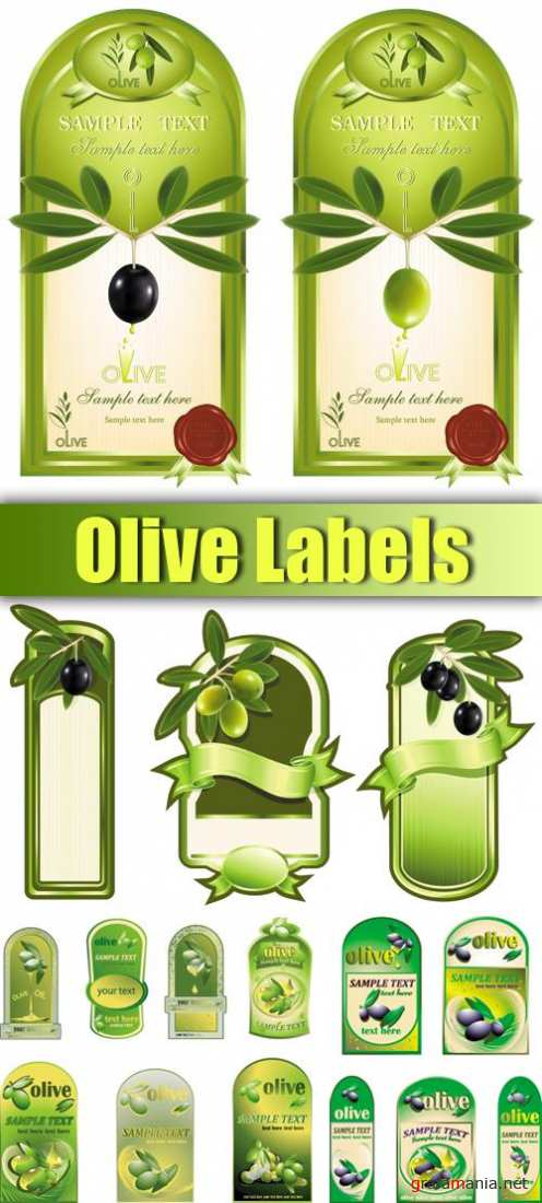 Olive Labels Vector
