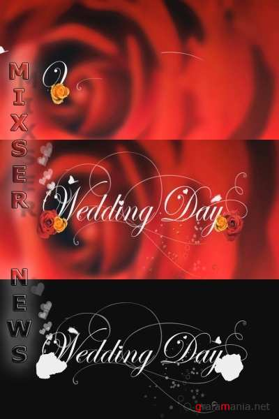 iStockvideo - Wedding Day