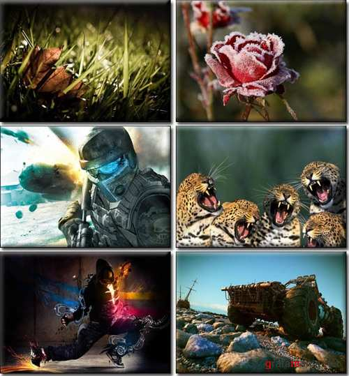 Amazing Desktop Wallpapers (35)