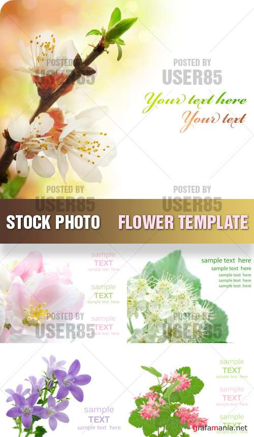 Stock Photo - Flower Template