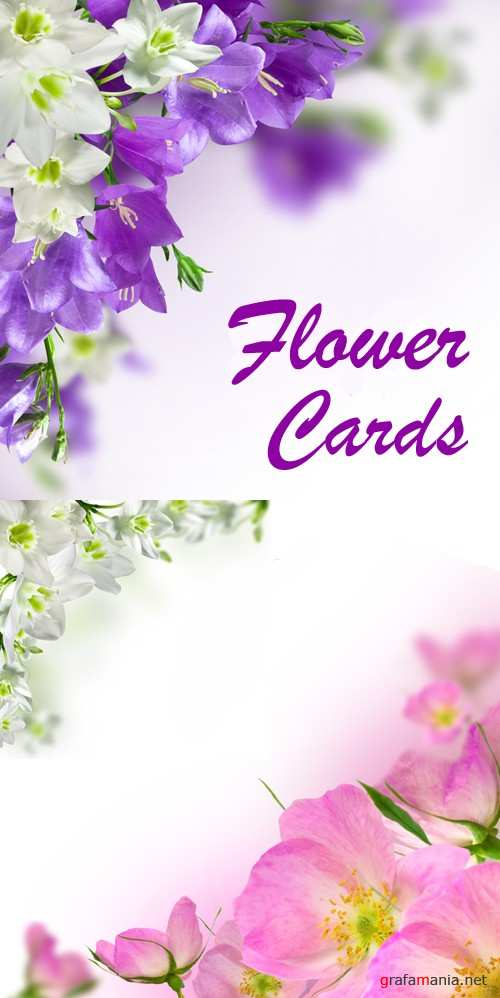 Stock Photo - Flower Cards