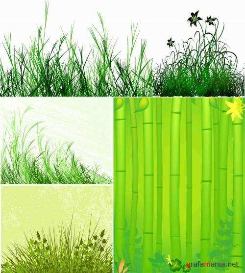 Vector stock - Beautiful Grass
