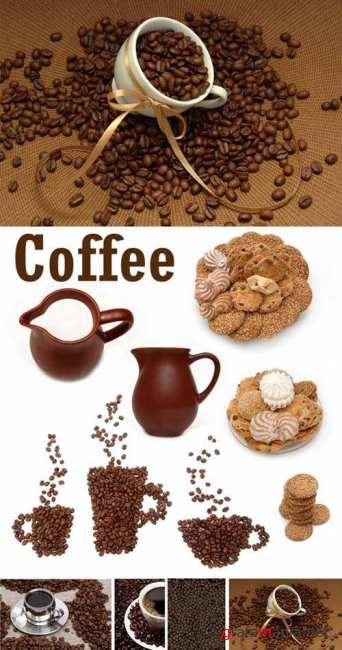 Coffee - clipart