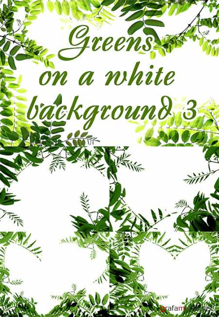 Greens on a white background 3