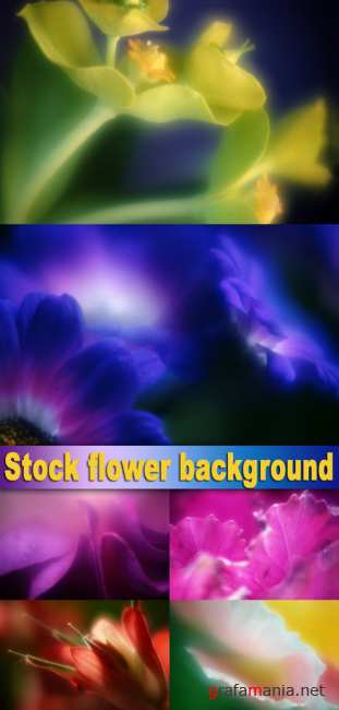 Stock flower background