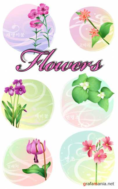 Stock vector - Flowers