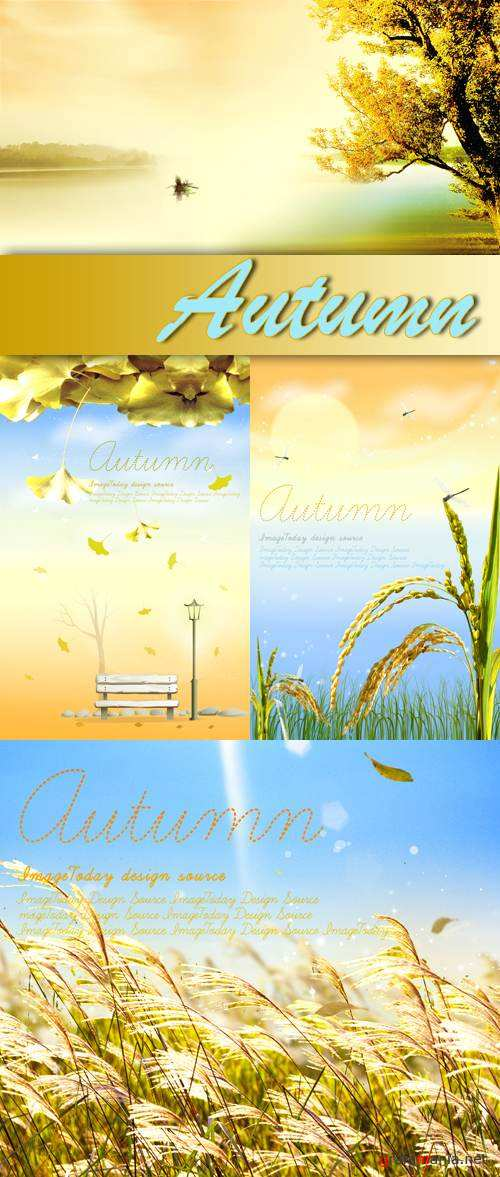 PSD Templates - Autumn