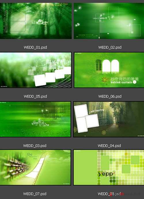 Backgrounds in green tones | 8 PSD