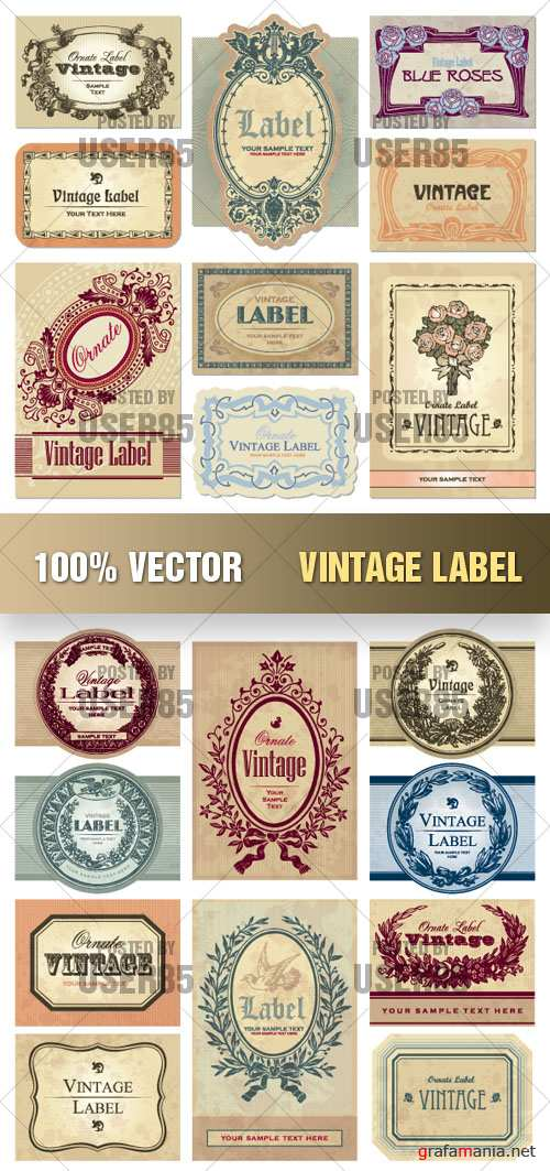 Stock Vector - Vintage Label