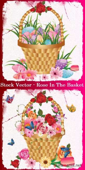 Stock Vector - Rose In The Basket