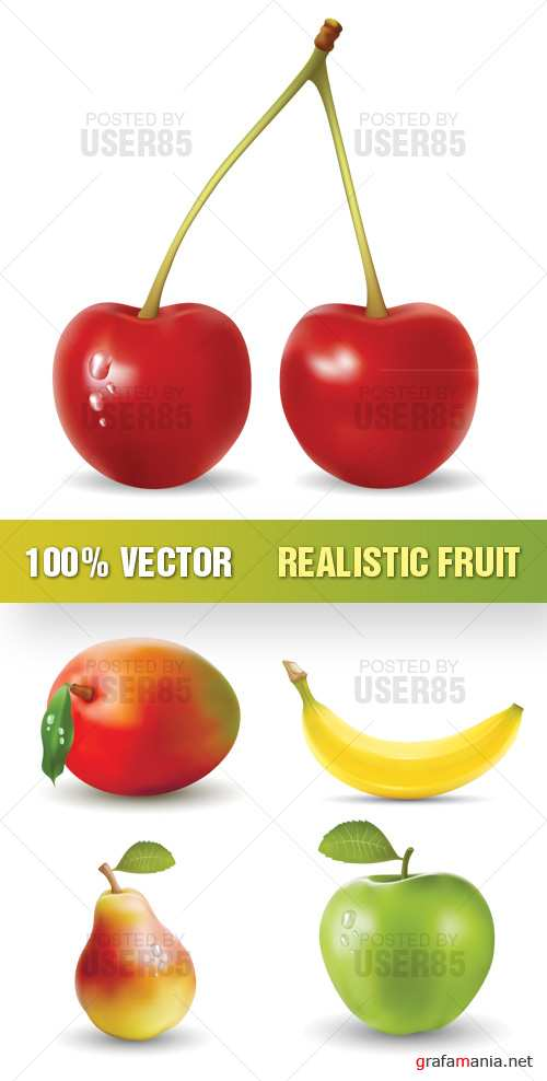 Stock Vector - Realistic Fruit