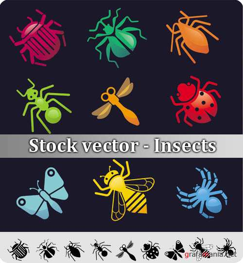 Stock vector - Insects