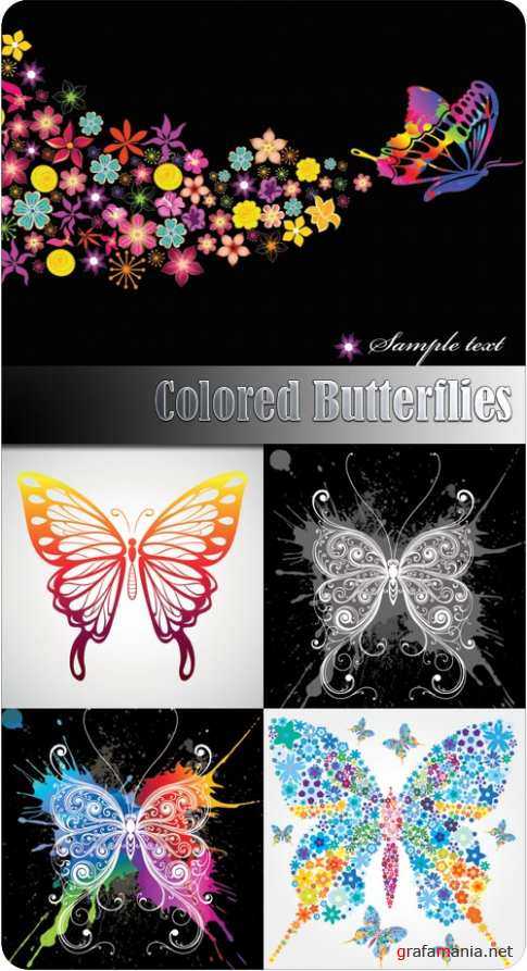Colored Butterflies