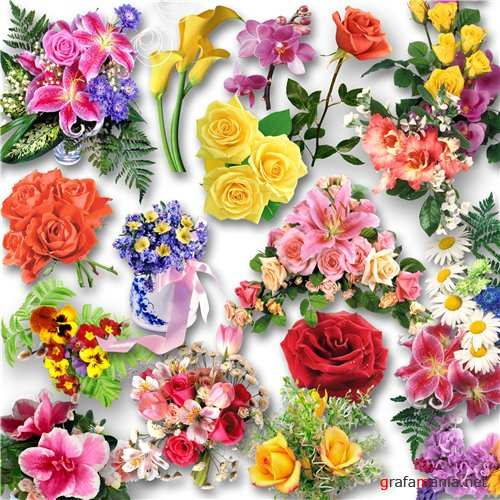 ��������� ������� / Clipart - Flowers