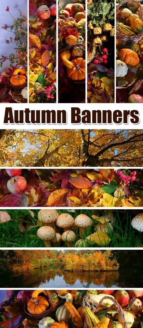 Stock Photo - Autumn Banners