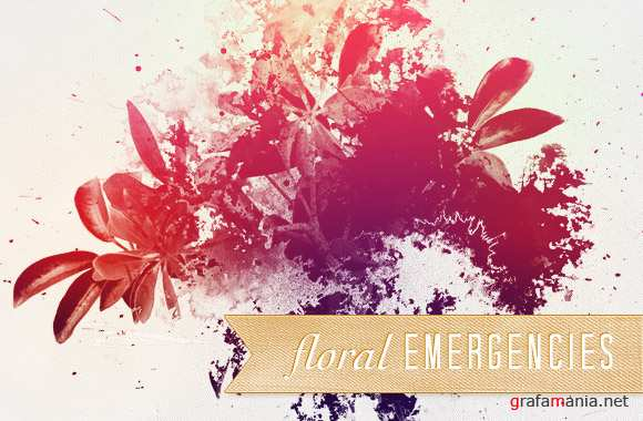 Floral emergencies brushes
