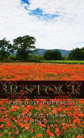 3R Stock - Poppy Field (1-2)