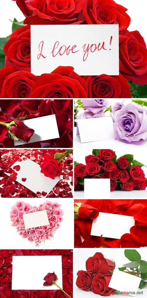 Stock Photo - Roses and Cards